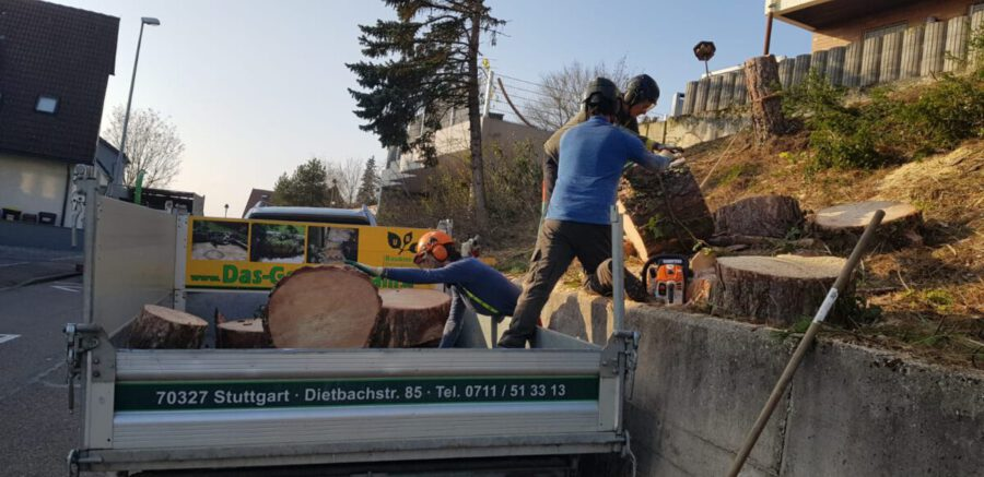 Entsorgung Stuttgart Grünschabfälle